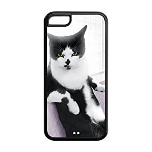 diy phone caseCat Design Case for ipod touch 5,Cover for ipod touch 5,Case Cover for ipod touch 5 ,Hard Case Protector for ipod touch 5diy phone case