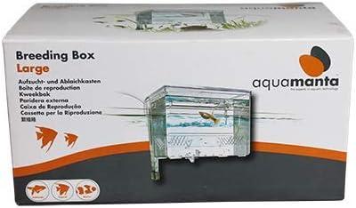 Aqua Manta A0403 - Caja de cultivo grande: Amazon.es: Productos para mascotas