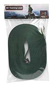 "LupinePet Basics 3/4"" Green 30-foot Extra-Long Training Lead/Leash for Medium and Larger Dogs"