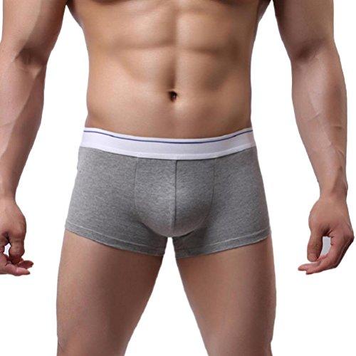 [Men's Underwear,Neartime Mens Boxer Underpants Shorts Pants Brifes (L, Gray)] (Sexy Fancy Dress Men)
