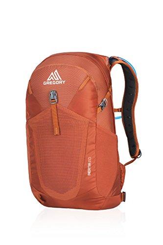 Gregory Mountain Products Men's Inertia 20 Liter Backpack, Ferrous Orange, One Size