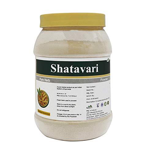 Jain's Shatavari Asparagus Racemosus Pure Powder - 500 Gram - Indian Ayurveda's Pure Natural Herbal Supplement Powder