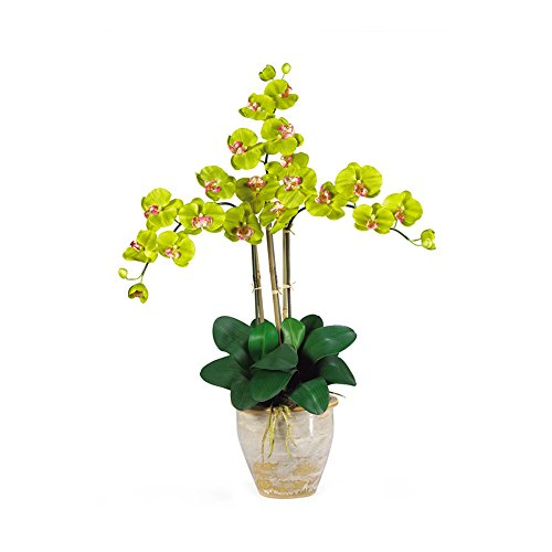 (Nearly Natural Triple Stem Phalaenopsis Silk Orchid Arrangement Green)