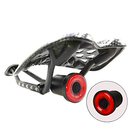 Bleiou Smart Bike Bicycle Taillight USB Rechargeable Tail Light Auto Start/Stop Brake Sensing IPx6 Waterproof Bicycle Light