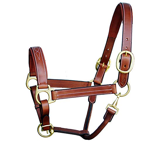 Royal Triple White Stitched Fancy Padded Halter and Brass Buckles | Equestrian Show Jumping Padded Halter | English Horse Riding Premium Tack | Oak Brown | (Fancy Horse Halters)