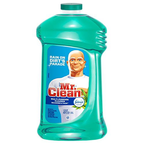 Review Mr. Clean with Febreze