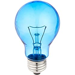 Daylight Blue Reptile Bulb (100 watt)