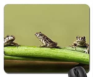 3 Frogs Mouse Pad, Mousepad (Frogs Mouse Pad) by mcsharks