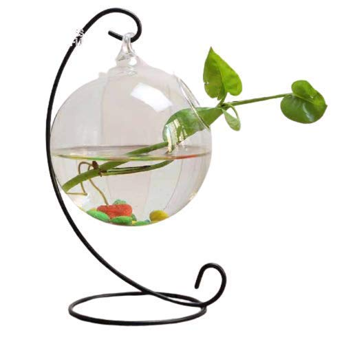 Hanging Bowl with Stand – Creative, Small Table Glass Fish Vase Aquarium for Fishes , Money Plant , Bush Plant Home…