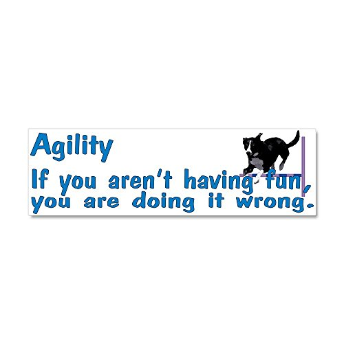 CafePress - Agility Fun - Car Magnet 10 x 3, Magnetic Bumper Sticker
