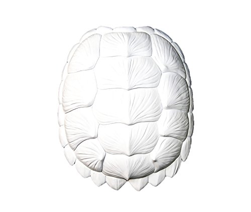 The Bayou in White - Large Faux Resin Turtle Shell - White