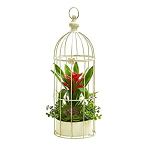 Artificial Flowers -19 Inch Bromeliad and Succulent Red Arrangement in Bird Cage 38