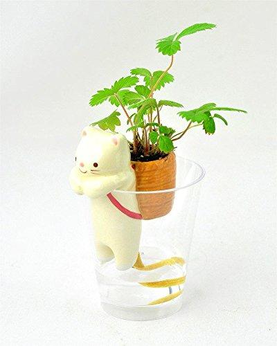 Mini Singe 1pcs Animal Queue Auto Arrosage Des Plantes De Paille Cat
