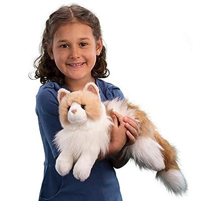 Douglas Kiki Ragdoll Cat Plush Stuffed Animal: Toys & Games
