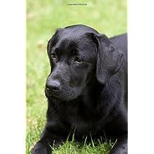 The Black Labrador Retriever Journal: 150 page lined notebook/diary