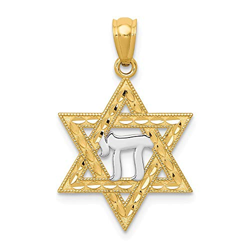 - 14k Yellow Gold Jewish Jewelry Star Of David Chai Pendant Charm Necklace Religious Judaica Fine Jewelry Gifts For Women For Her