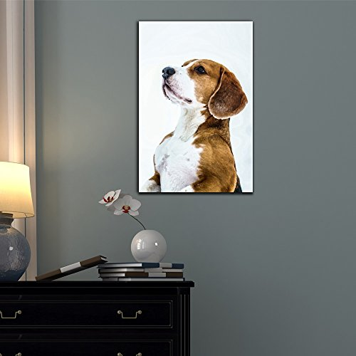 Dogs Breeds Standing Funny Beagle Dog Pet Art for