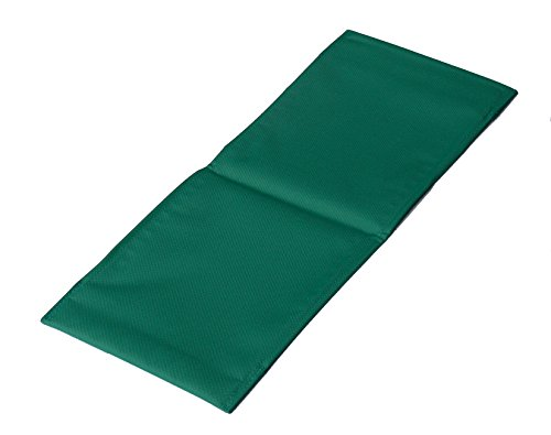 (Ramp Cover for Guinea Pig Habitat and Guinea Pig Habitat