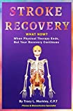 img - for Stroke Recovery What Now?: When Physical Therapy Ends, But Your Recovery Continues book / textbook / text book