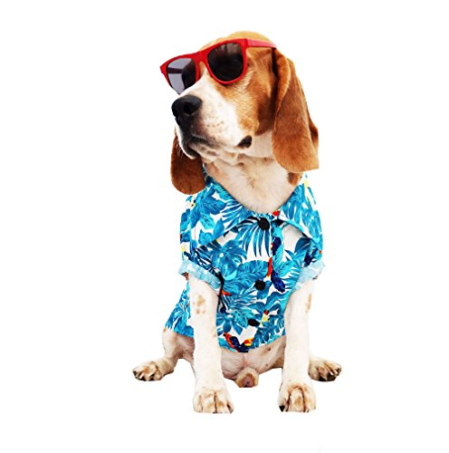 Dog Shirts Summer Camp,Dog Shirts,Dog Clothes,Small,Medium,Large,Colorful shirts,T Shirt Pet Clothing , Puppy Clothes ,Summer Dog Apparel,Hawaiian styles,Blue hawaiian (Scene Dog T-shirt)