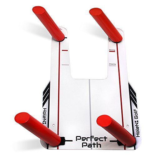 Golf Swing Perfect (HoleN1 Golf Perfect Path - Includes Pinch Plate and Four Path Poles - Speed Trap Golf Swing Training Aid - Trap the Ball and Improve Swing Path - Train Your Eyeline on Where Your Swing Path Should Be)