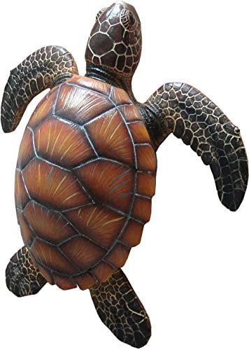 DWK – Shellback Seafarer – Sea Turtle Wall Mount Sculpture Ocean Tortoise Marine Nautical Home D cor Garden Accent, 10.75-inch