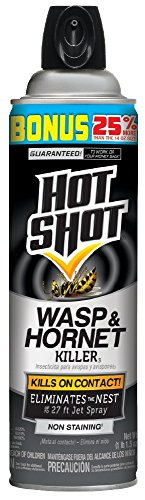 Hot Shot 13416 Wasp & Hornet Killer Aerosol, 17.5 Oz