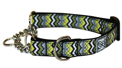 RC Pet Products 1-Inch Training Martingale Dog Collar, X-Large, Soho