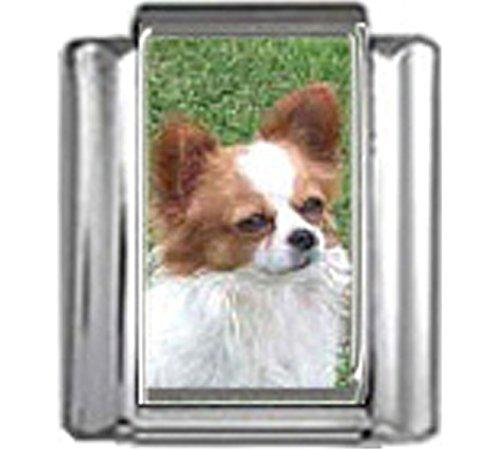 Stylysh Charms Chihuahua Dog Photo Italian 9mm Link DG142 ()