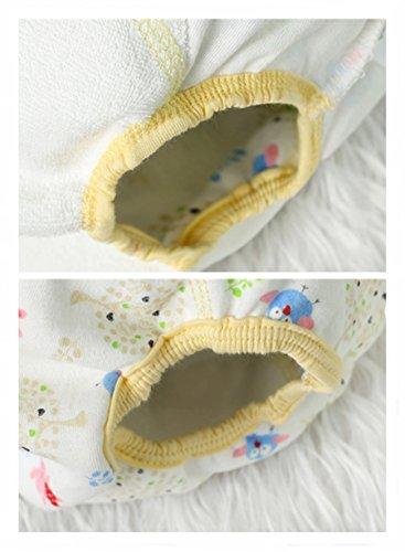 HaimoBurg Confezione da 6 Impermeabili Cotone Mutandine di Apprendimento per Bambino (1-2 Anni, A) 3