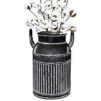 Soyizom Vaso di brocca di Latte per Fattoria primitivo/Vaso di Fiori in brocca retrò in Metallo Francese/Vaso da…