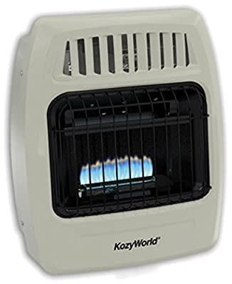 WORLD MKTG OF AMERICA/IMPORT KWD154 10000 BTU Dual Gas Wall Heater