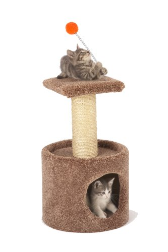 Cat Craft 124070 1-Story Condo Tower (Colors may vary), My Pet Supplies