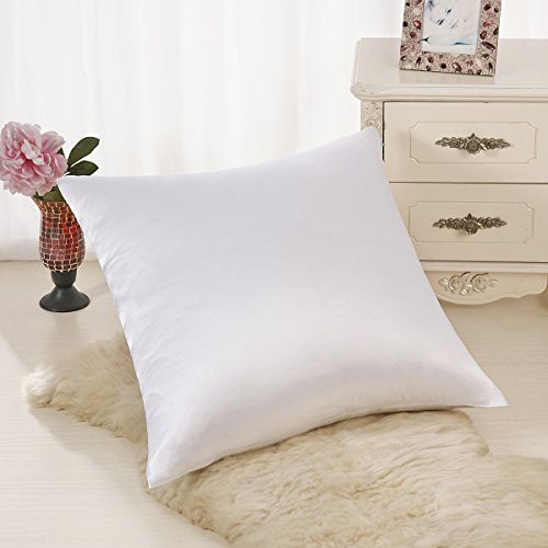 ALASKA BEAR Natural Silk Euro Pillow Sham Cover, Hypoallerge