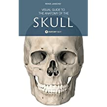 Skull Anatomy: Visual Guide To The Anatomy of The Skull