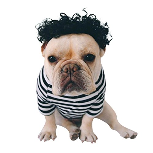 Dog Wigs Cat Hair Costumes Soft Synthetic Dog Hair Colored Curly Wig Lucy Braids For Small Pet By Sleepydog (M, Black) ()