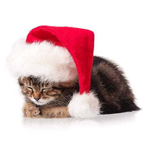 IDM Pet Cat Dog Santa Hat Holiday and Christmas Pet Accessory -