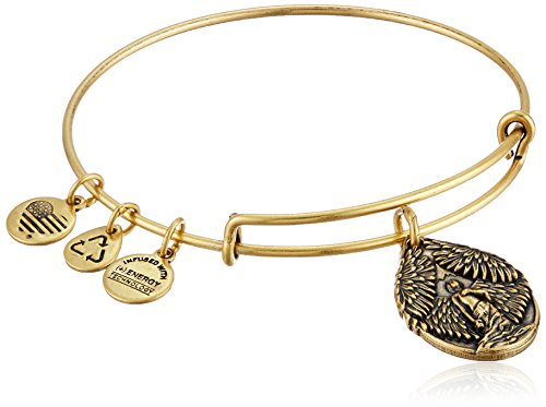 Alex Ani Guardian Expandable Wire Bracelet
