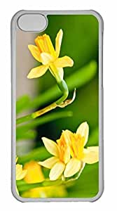 iPhone 5C Case, Personalized Custom Spring Has Sprung for iPhone 5C PC Clear Case