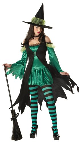 Emerald Witch Adult Costume - Small 2018