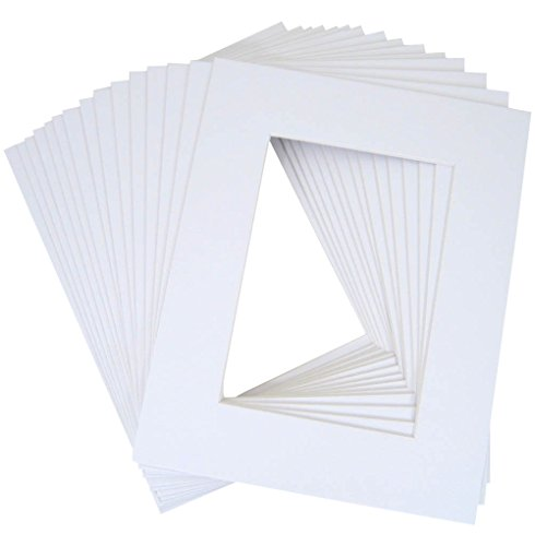 10 of 18x24 White Pre-cut Acid-free whitecore mat for 12x18 + back+bag