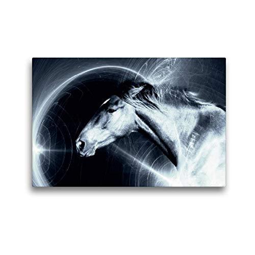 Premium Textil de lienzo 45cm x 30cm Horizontal Space Horse, 45x30 cm por Nicole Bleck