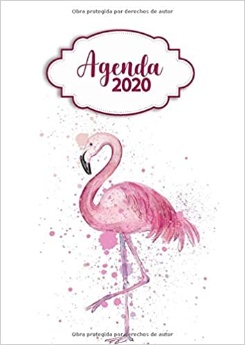 Agenda 2020: Tema Flamingos Agenda Mensual y Semanal + ...
