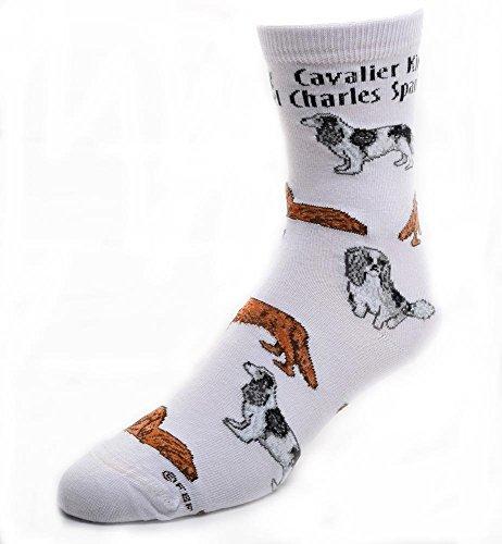 Cavalier King Charles Spaniel Socks Poses 2,White,Medium