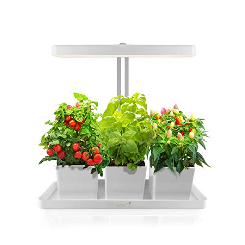 Grow Lights For Indoor Herb Garden in US - 9