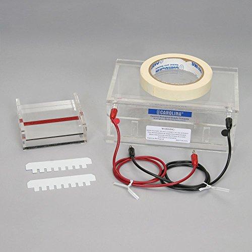 Gel Accessories Electrophoresis - Carolina Gel Electrophoresis Chamber