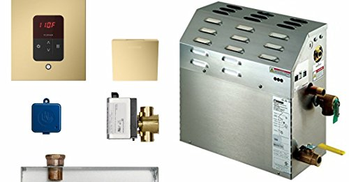 Mr. Steam MS225E Steam Bath Generator with Square Butler Package in Satin Brass