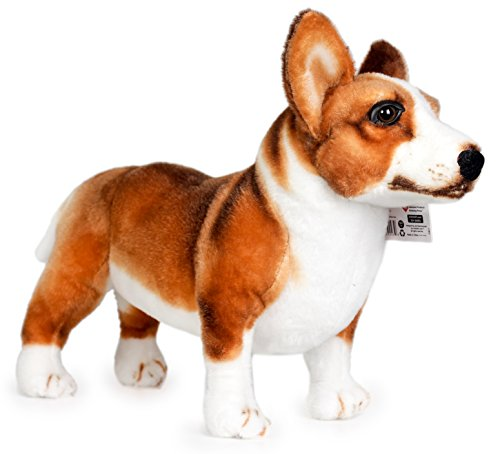 Baby Costumes In Walmart (Caerwyn the Cardigan Welsh Corgi | 18 Inch Large Welsh Corgi Dog Stuffed Animal Plush Dog | By Tiger Tale Toys)