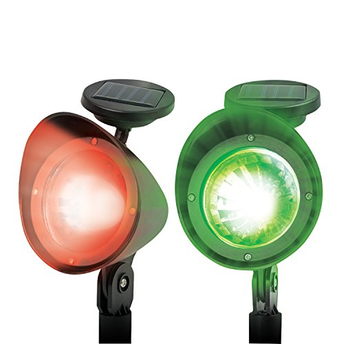 d Lights with Remote - Set of 2, Red, Green,  ()