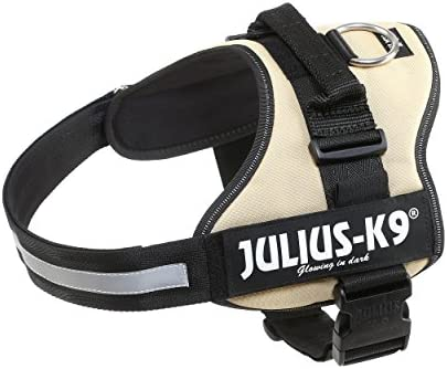 Julius-K9, Talla 1: Amazon.es: Productos para mascotas